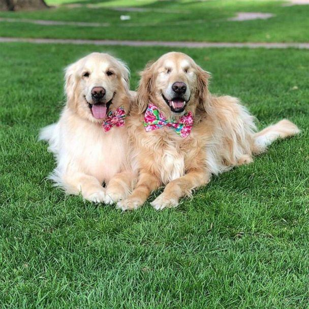 PHOTO: Addie and Jake pose for a photo. (thegoldensrule/Instagram)