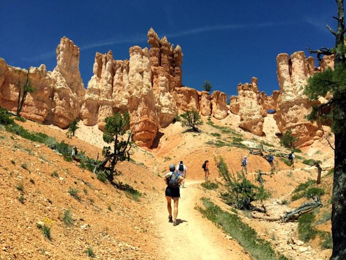 """Hikers on a Backroads trip head up a trail in Bryce Canyon National Park in Utah. <span class=""""copyright"""">(Nadine Orenstein)</span>"""