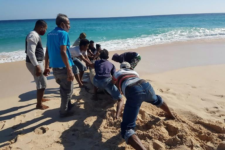 Locals rushed to push an eleventh member of the stricken pod across the baking sands and back into the ocean