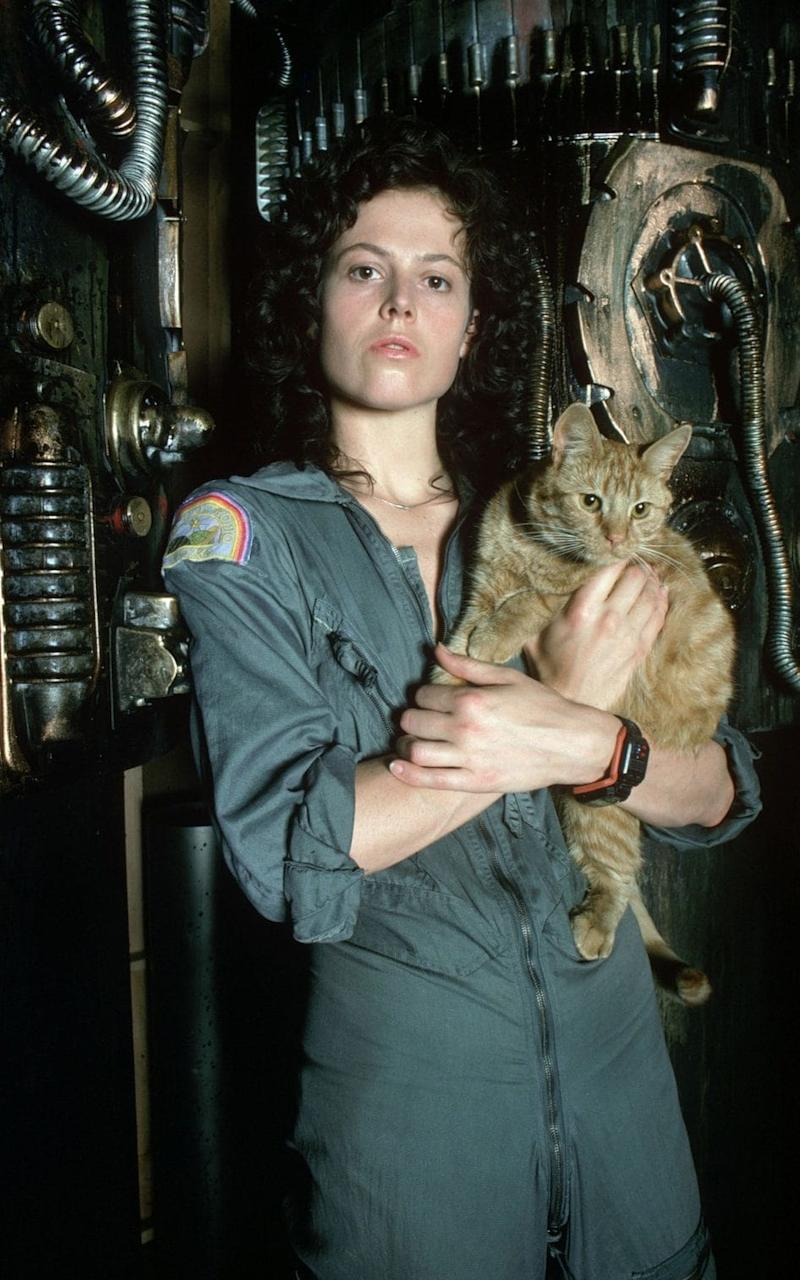 Jones and Ripley (Sigourney Weaver)