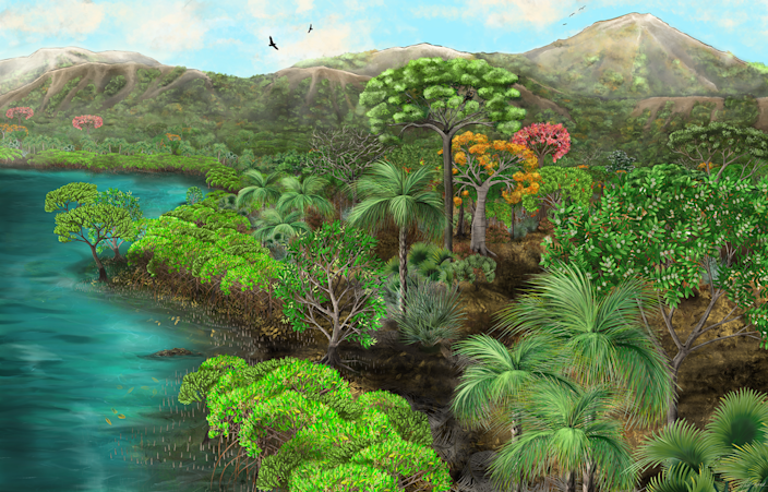 """<span class=""""caption"""">With the evidence uncovered by paleontologists, an artist sketched El Bosque Petrificado Piedra Chamana as it might have looked long before humans.</span> <span class=""""attribution""""><a class=""""link rapid-noclick-resp"""" href=""""https://www.nps.gov/flfo/learn/nature/peru-eocene-forest.htm"""" rel=""""nofollow noopener"""" target=""""_blank"""" data-ylk=""""slk:Mariah Slovacek/NPS-GIP"""">Mariah Slovacek/NPS-GIP</a></span>"""