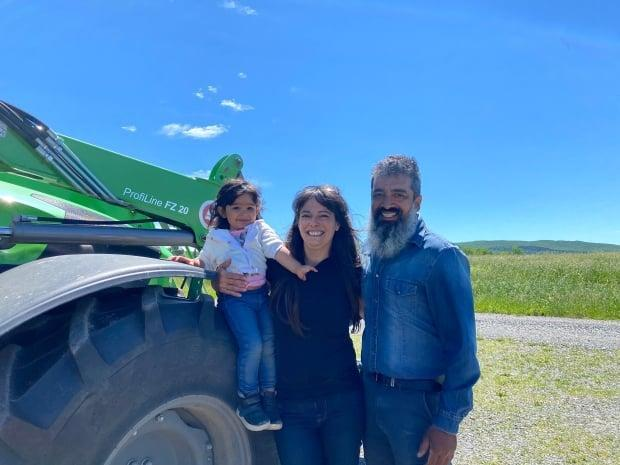 Nancy Lanteigne and Syed Mohamed, along with their two-year-old daughter Leilah, own the WB Gold Farm in West Bolton, where they set out to start an apiary, and in the process, acquired a dozen Highland cattle.  (Spencer Van Dyk/CBC - image credit)