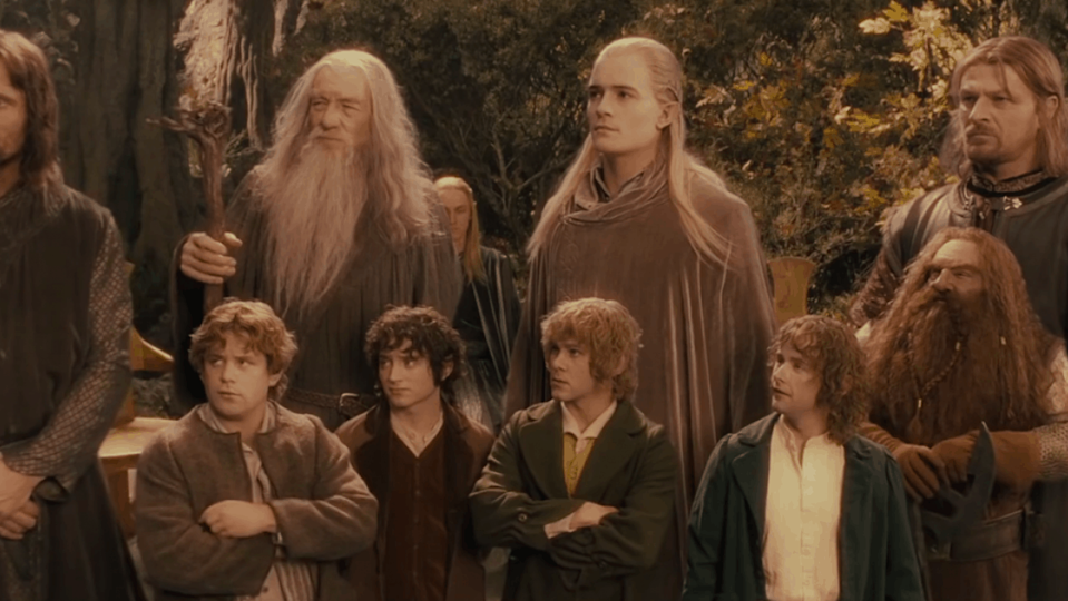 The Fellowship of the Ring stands tall in Lord of the Rings.