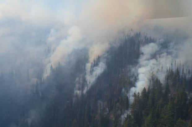 Smoke rises from the 400-hectare Mowhokam Creek wildfire, near Lytton, B.C., on July 17. The B.C. Wildfire Service classified the blaze as 'Out of Control,' noting its smoke is 'highly visible from surrounding communities.'  (B.C. Wildfire Service/Twitter - image credit)