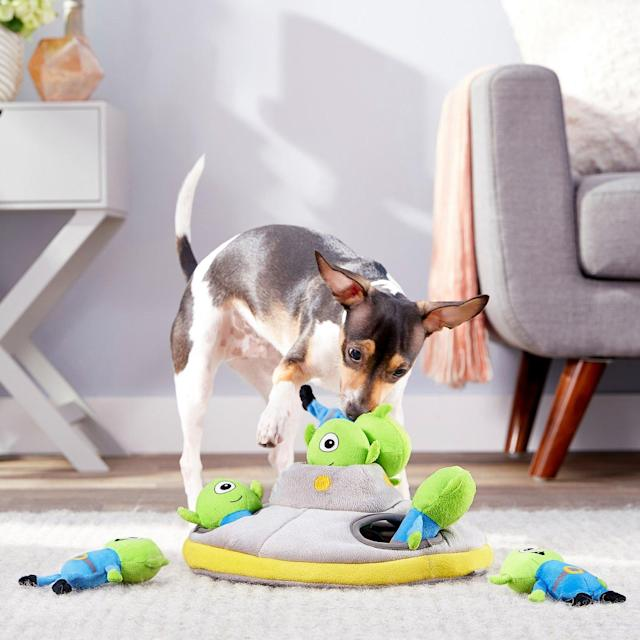 Frisco Hide and Seek Plush Flying Saucer Puzzle Dog Toy (Photo: Chewy)