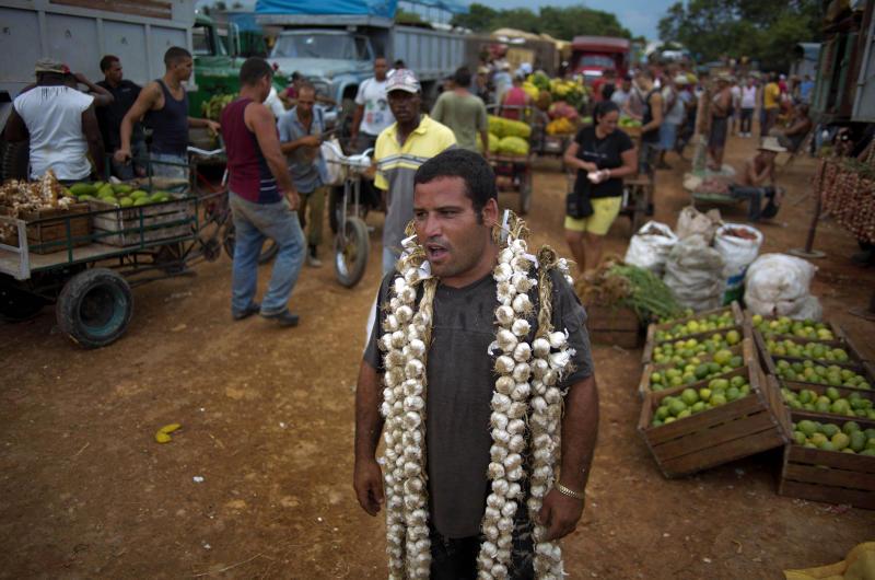 In this Sept. 30, 2013 photo, farmer Asley Cruz, 35, wears a string of garlic on his shoulders as he yells prices at the 114th Street Market on the outskirts of Havana, Cuba. The market's bustle is a result of economic reforms begun in 2010 by President Raul Castro, which includes relaxing rules on private farming. In another reform, Cuban authorities recently authorized small farmers to also sell directly to hotels and tourist centers beginning this month. (AP Photo/Ramon Espinosa)