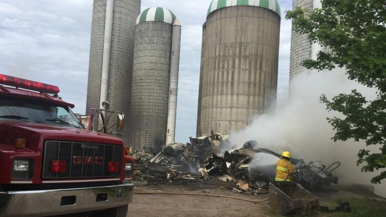 'How can we rebuild with all this mess?' Fire destroys dairy barn, kills cows