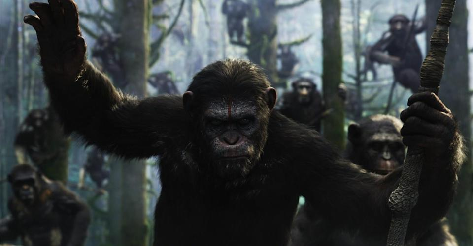 Andy Serkis as the heroic Caesar in 'Dawn of the Planet of the Apes'. (Twentieth Century Fox)