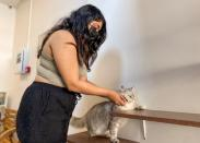 A woman plays with a cat at the Ailuromania Cat Cafe, where customers can relax among purring felines or adopt a stray cat in Dubai