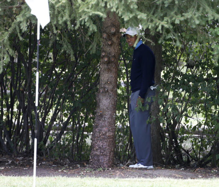 Tiger Woods stands under a tree behind the first hole during the second round of the BMW Championship golf tournament at Conway Farms Golf Club in Lake Forest, Ill., Friday, Sept. 13, 2013. Woods double bogeyed the hole. (AP Photo/Charles Rex Arbogast)