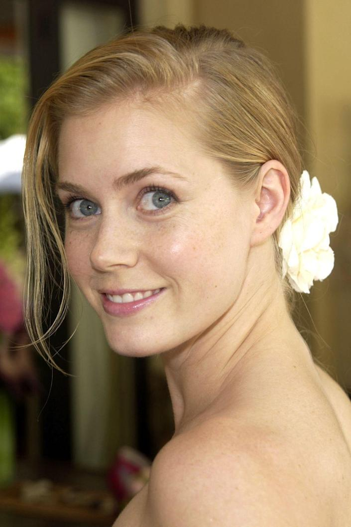 <p>Truth be told, Amy was a blonde for most of her pre-A-list life! She looks super-sweet both ways, though, no?</p>