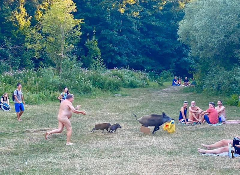 Onlookers were amused by the sight of a naked man chasing a wild boar carrying his belongings: Adele Landauer