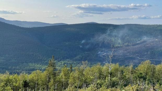 A wildfire burned through 64 hectares near the Mount Carleton Provincial Park, and is marked 'contained' as of Tuesday morning. (Submitted by Philippe Perron - image credit)