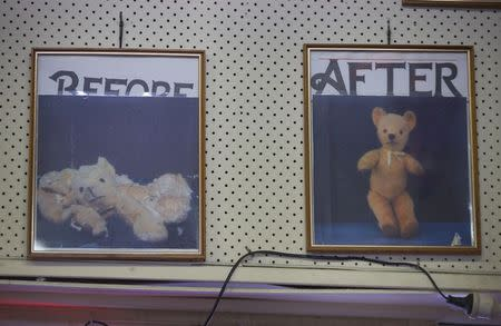 Two photographs hanging on the wall of Sydney's Doll Hospital show the before and after pictures of a teddy bear that had been brought in for repair, June 17, 2014. REUTERS/Jason Reed