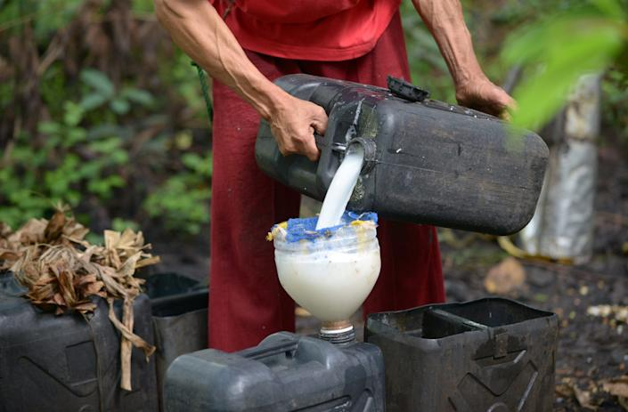 coconut sap