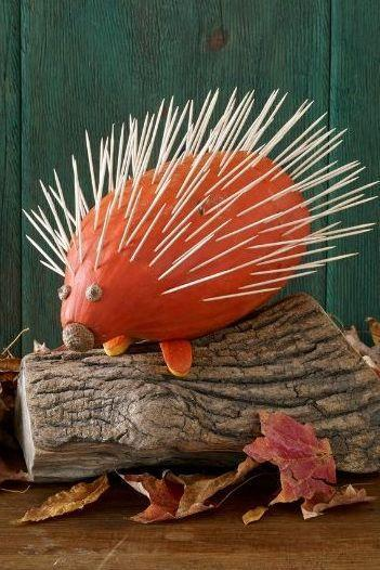 <p>Watch your hands around this prickly fella. He's fashioned from a squash and loads of sharp toothpicks.</p><p><strong>Make the Porcupine Pumpkin:</strong> Using a craft knife, cut two rounded feet from a small gourd. Position an oval squash (this is the porcupine body) with the stem centered as a nose. Choose where the feet should sit and press toothpicks into the gourd, then press the feet into the toothpicks. This will anchor the porcupine body and stop it from rolling around. <br></p><p>To create quills, frame the face by inserting toothpicks into the rind, leaving enough space for eyes. (Tip: Pushing them in at a slight angle makes it easier). Continue until the body is fullu covered. Affix two small acorn caps to the face with hot glue for eyes. Affix a larger acorn cap with hot glue to create a snout nose.</p>