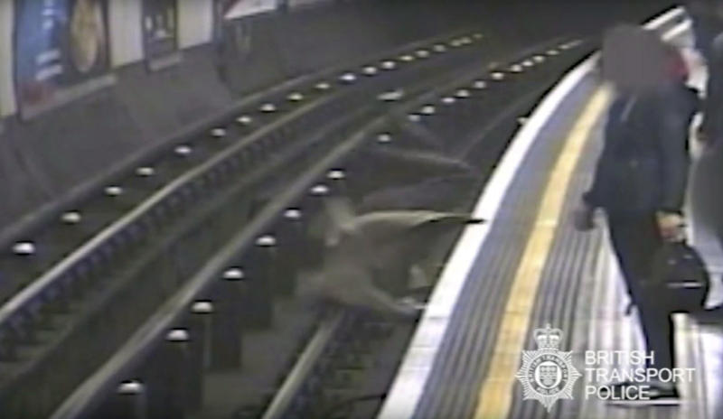 This undated handout grab taken from CCTV issued by British Transport Police shows Robert Malpas being pushed on to the tracks of Marble Arch Underground station in London. A man has been convicted of attempted murder for pushing the former chairman of cross-Channel tunnel operator Eurotunnel onto London subway tracks. A jury found Paul Crossley guilty Friday, Oct. 5, 2018 of shoving 91-year-old Robert Malpas off a platform at Marble Arch station in April. Malpas suffered a fractured pelvis and a gash to his head. (British Transport Police via AP)