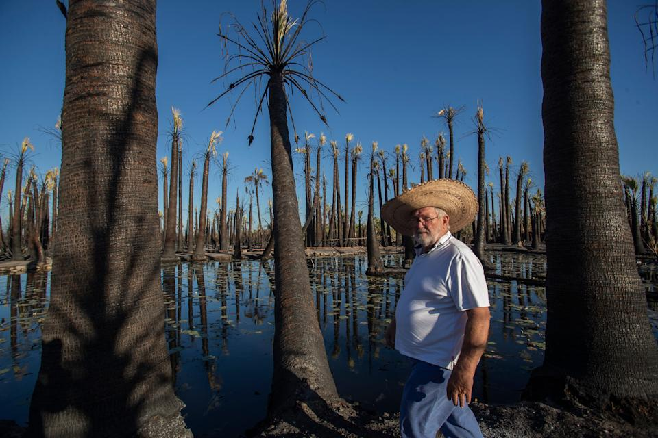 """""""It will be even more beautiful than it was"""" says Barnacle Luffy about restoring his property after a fire destroyed his six-acre oasis in Niland."""