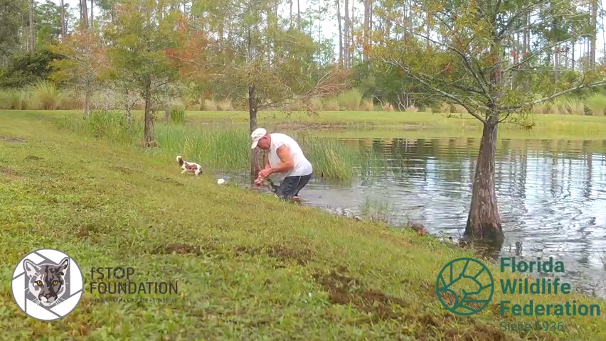 An Estero man is captured on camera saving his dog from an alligator in October.