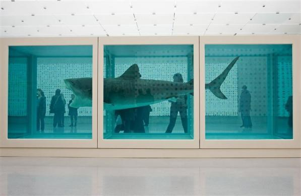 "Visitors walk behind a work by British artist Damien Hirst titled ""The Physical Impossibility of Death in the Mind of Someone Living"" at the Kunsthaus in Bregenz February 17, 2007."