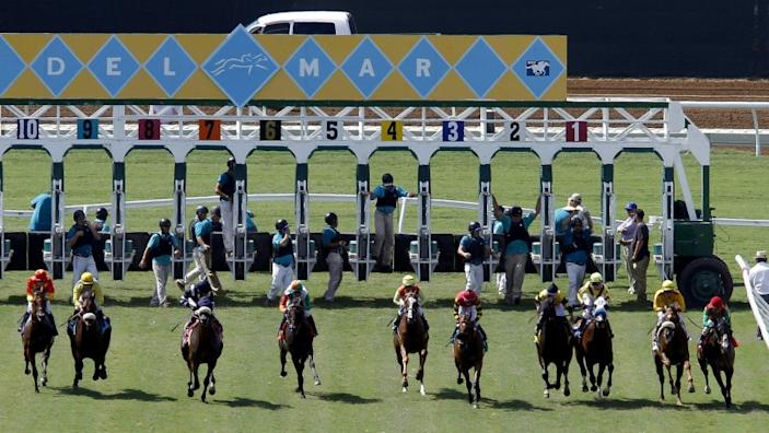 """Horses take off from the starting gate at Del Mar. Two horses have died at the track since it opened for training June 28. <span class=""""copyright"""">(Hayne Palmour IV / San Diego Union-Tribune)</span>"""