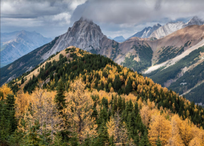5 lesser-known interesting facts about fall