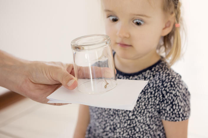 Arachnophobia starts young.... (Getty Images)