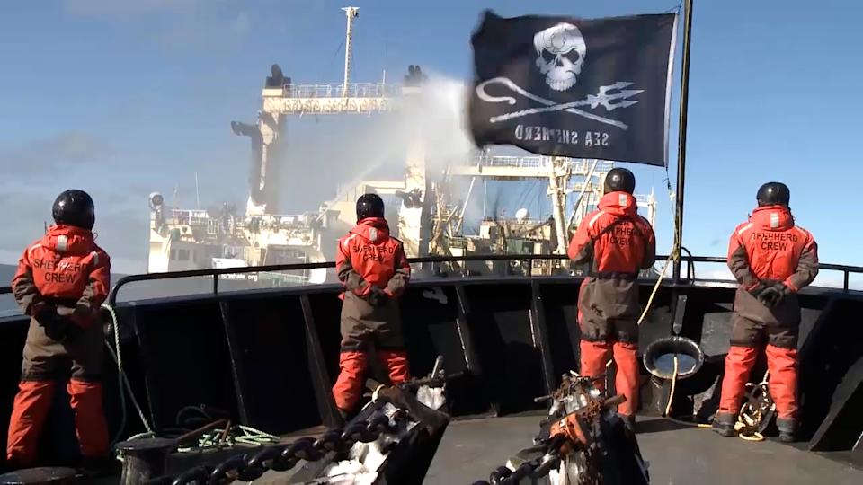 Sea Shepherd activists with their back to camera on a boat. The Sea Shepherd flag is flying.