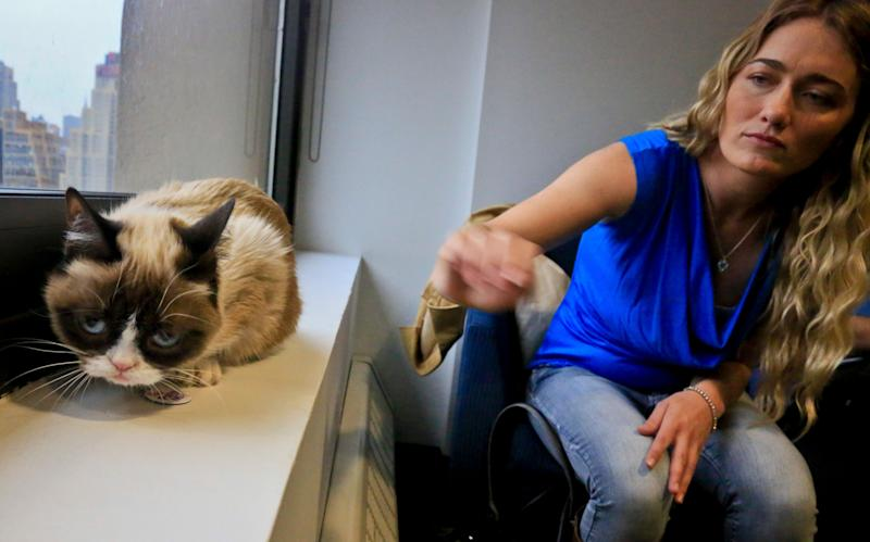 New York. Bundesen says that Grumpy Cat's permanently grumpy-looking face is due to feline dwarfism