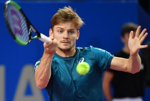 <p>Goffin dismisses Mahut in Rotterdam first round</p>