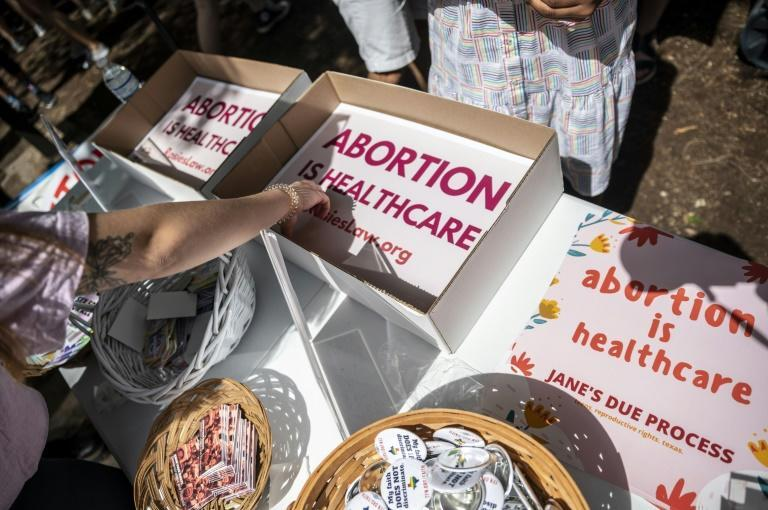 Abortion rights signs are seen at a protest outside the Texas state capitol (AFP/SERGIO FLORES)