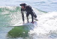<p>Adam Brody gets suited up for a day of surfing in Malibu on Wednesday. </p>