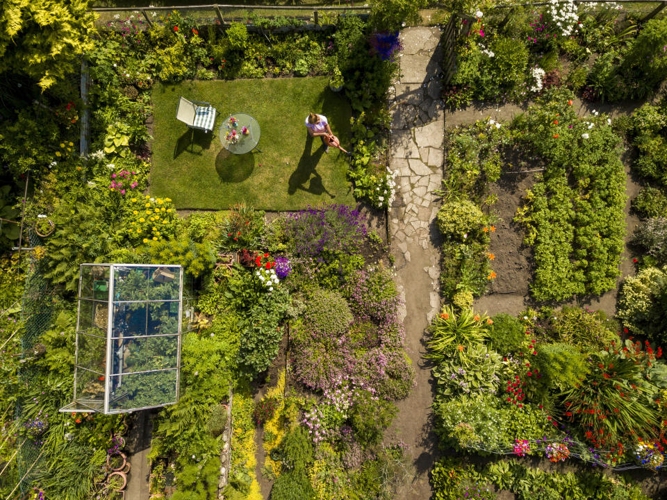 Demand for allotment plots has surged during coronavirus pandemic, pictured Moncrieffe Island Allotments, Perth. (SWNS)