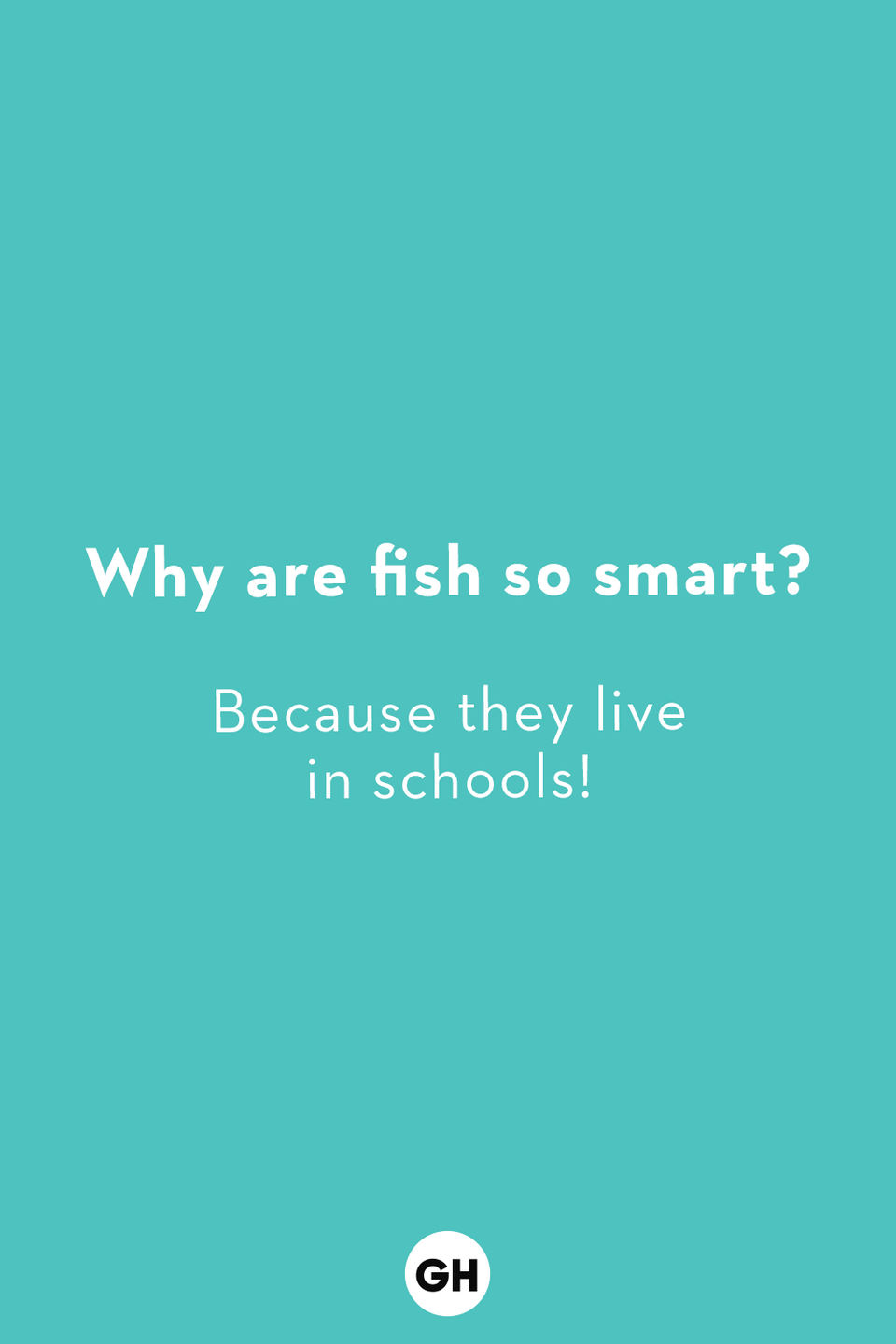 <p>Because they live in schools!</p>