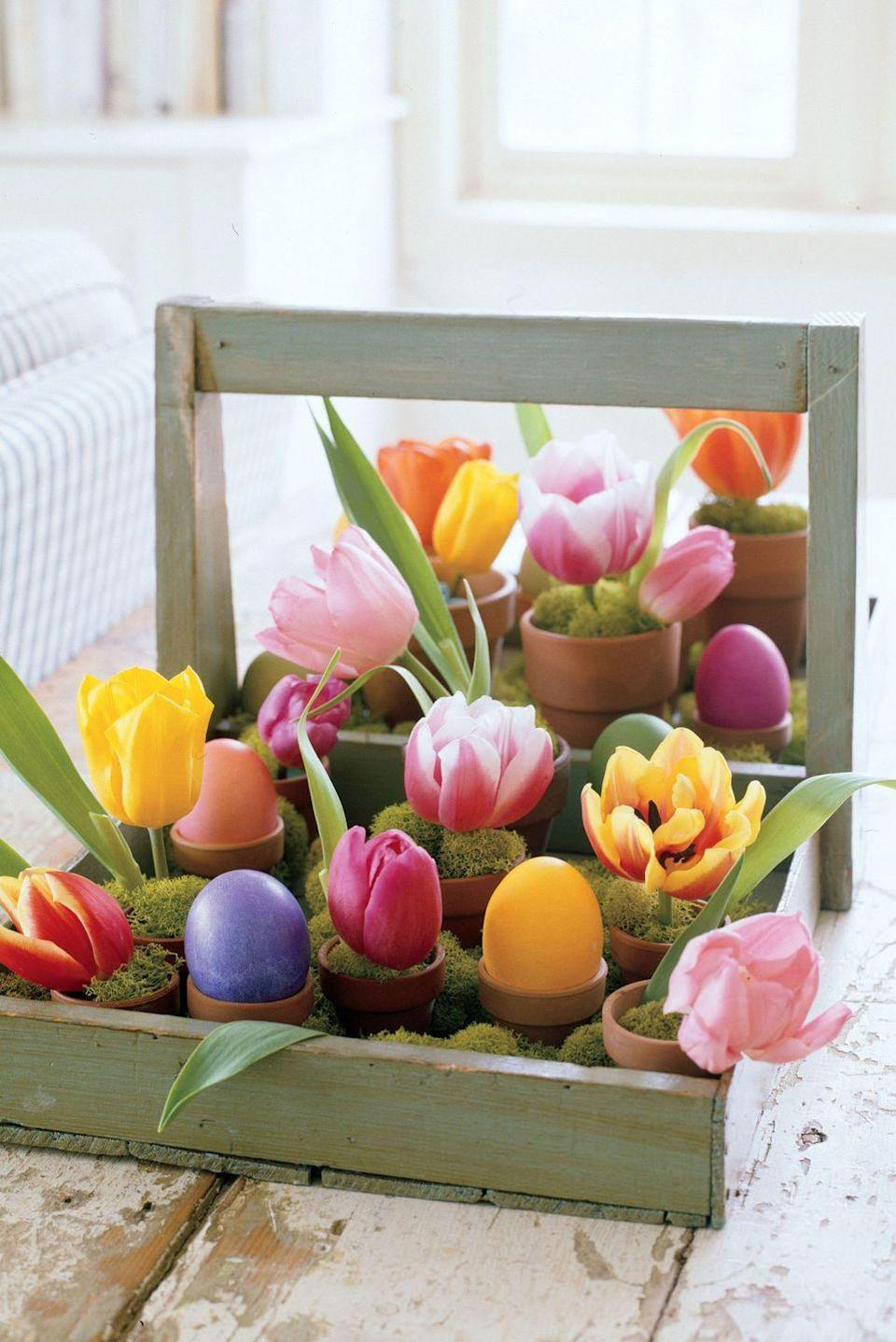 <p>With tulips and colored eggs, a berry tray becomes a cheery centerpiece to brighten any tabletop. Place tiny terra-cotta pots inside the a wooden tray, filling the spaces in between with mounds of decorative moss. In about half the containers, perch dyed eggs; in the other half, insert dampened floral foam, tulip blossoms, and more moss. </p>