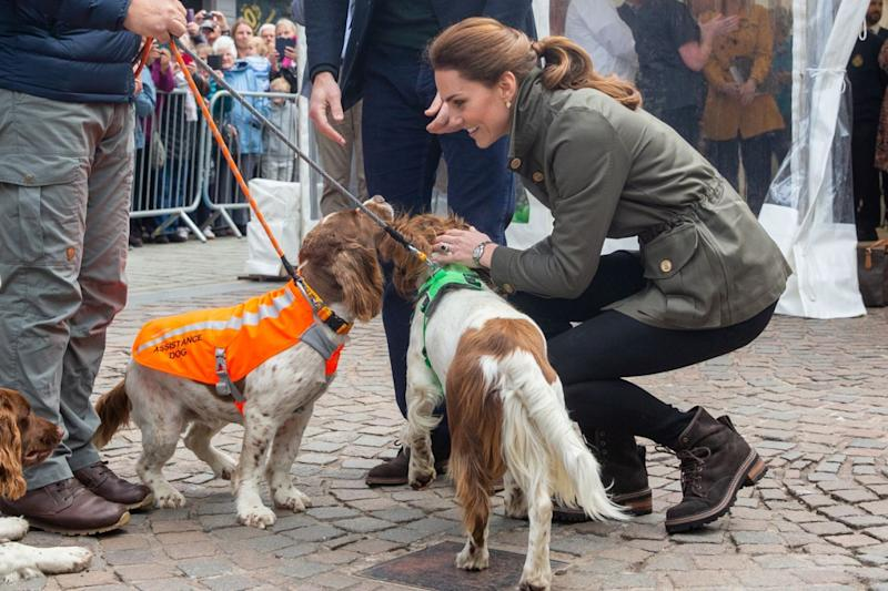 The Duchess of Cambridge took time to greet some four-legged royal fans in Cumbria. Photo: Getty Images