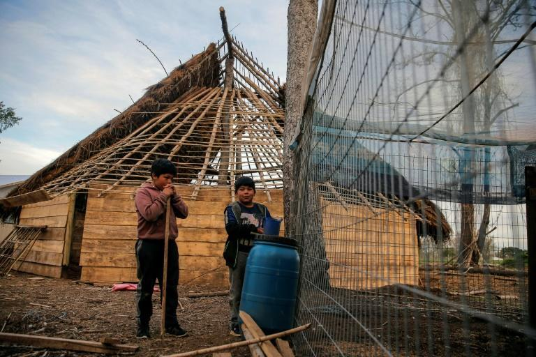 In the Mapuche Fermin Manquilef village in Araucania, indigenous people live in traditional wood and straw homes (AFP/Javier Torres)