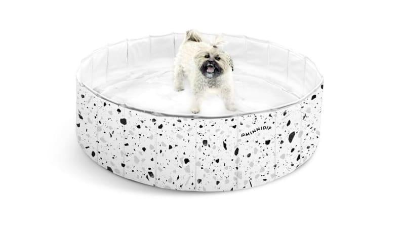You'll want to snap even more photos of your pup with this Minnidip pool in the picture.