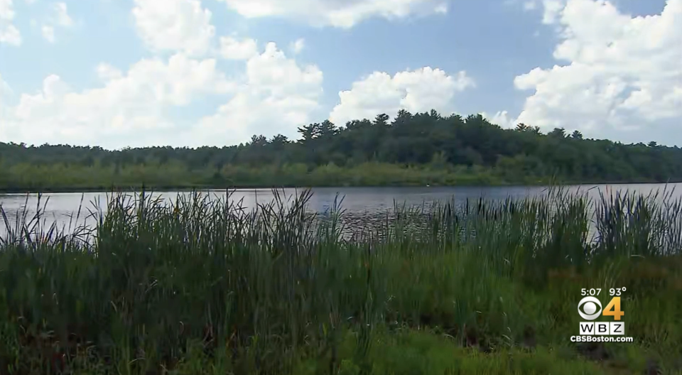 Pictured is Island Creek Pond in Massachusetts, where Jack Callahan allegedly killed his father.