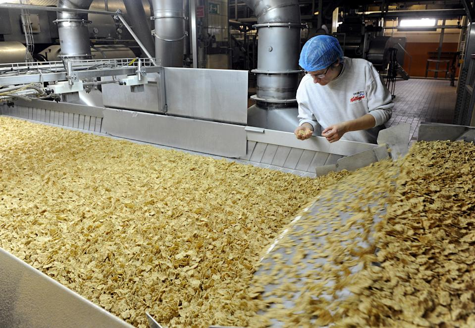 An employee of the Kellogg Deutschland GmbH examines the breakfast cereal 'Cornflakes' in the production in the Kellogg's plant in Bremen, Germany, 16 October 2013. For fifty years now, the different cornflakes products of the US cereal producer are produced in Bremen. The more than 100 year old company celebrated the 50 year anniversary of the Bremen plant. Photo: Ingo Wagner/dpa | usage worldwide   (Photo by Ingo Wagner/picture alliance via Getty Images)