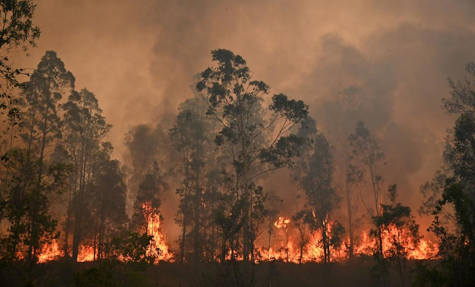 Pictured is a fire in Bobin bushland over the weekend.