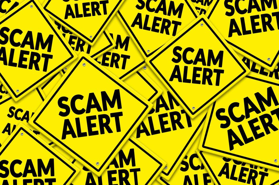 """Yellow signs labeled """"Scam Alert"""""""