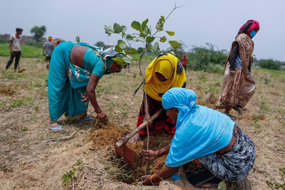 The drive spans through 68,000 villages and 83,000 forest sites (AP)