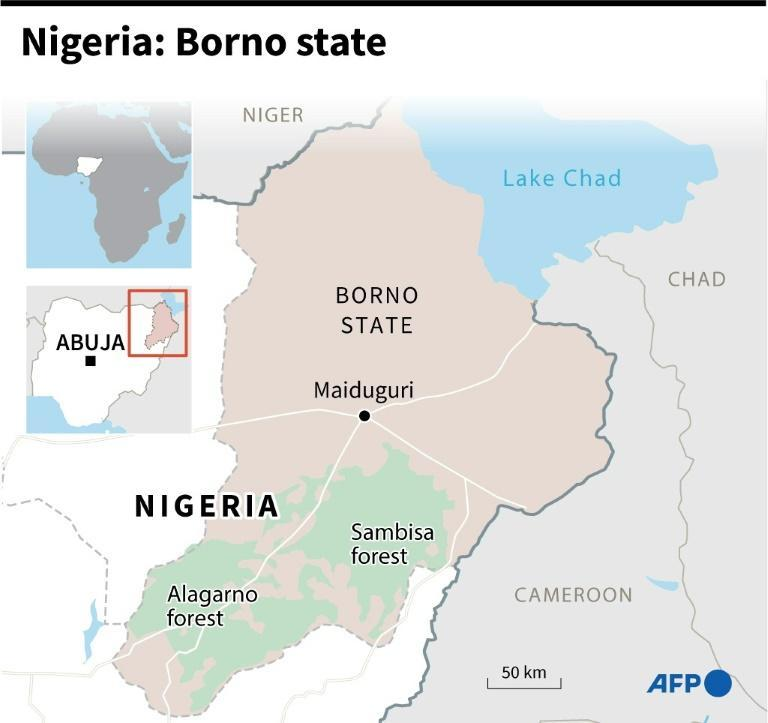 Borno State in northeastern Nigeria has borne the brunt of the jihadist campaign launched by Boko Haram a dozen years ago (AFP/Jonathan WALTER)