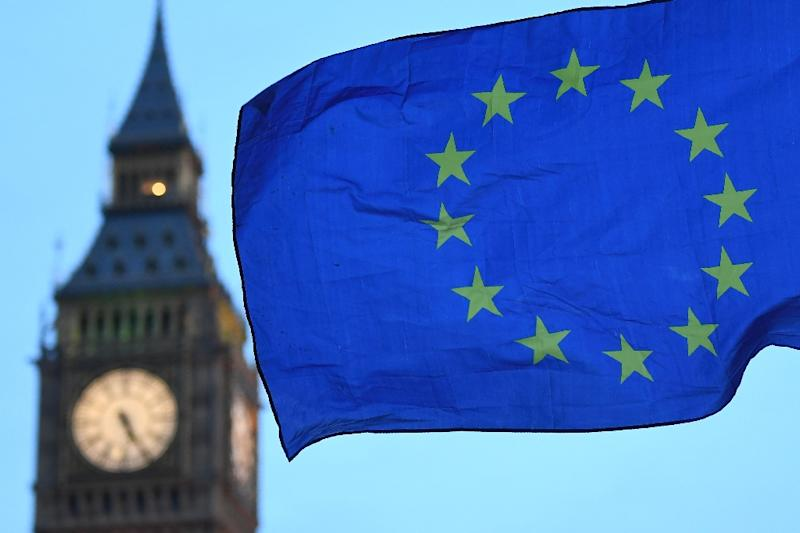 Britain and Brussels are still a long way apart on key issues in Brexit talks, EU officials warn (AFP Photo/Justin TALLIS)