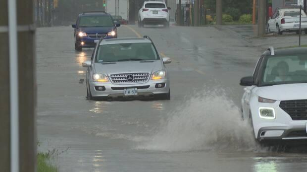 Friday's rainfall dumped as much as 100 millimetres of water on parts of Windsor-Essex. (CBC - image credit)