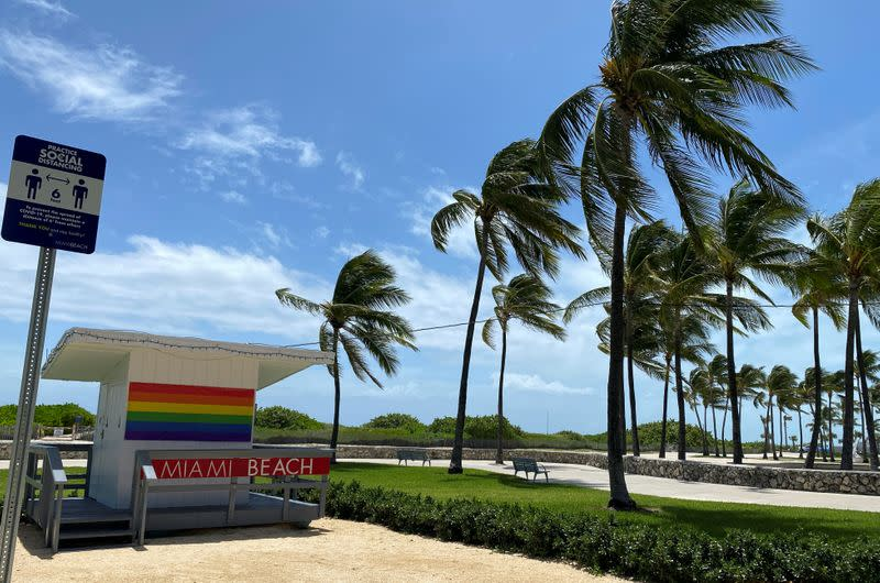 Palm trees bend in the winds preceding Hurricane Isaias in Miami Beach