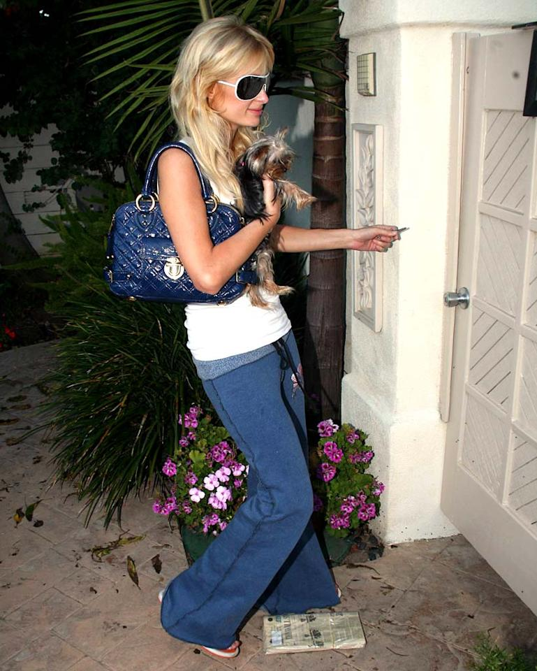 """Paris arrives home with her brand new pet dog. <a href=""""http://www.x17online.com"""" target=""""new"""">X17 Online</a> - July 12, 2007"""
