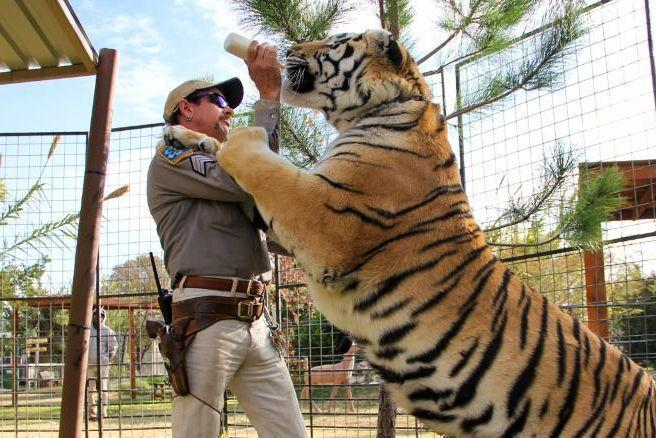 Joe Exotic has limo waiting as he expects pardon from Donald Trump