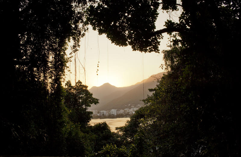 In this Sept. 15, 2012 photo, the Lagoa Rodrigo de Freitas lagoon is seen from the Quilombo Sacopa in Rio de Janeiro, Brazil. The Pinto family first arrived more than a century ago as escaped slaves hiding out in a nearby cave. Since then, the surrounding area has become one of the city's most exclusive, and governments and neighbors have relentlessly clamored for the eviction of the community, which the family calls Sacopa. (AP Photo/Victor R. Caivano)